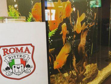 Заведение с автентична средиземноморска и азиатска кухня във Варна | Бистро Рома