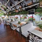 Вкусна храна и приятна лятна градина в кв. Бояна и кв. Овча купел   Ресторанти The School
